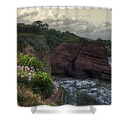 Around The Red Rock Shower Curtain by Rob Hawkins
