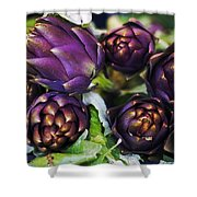 Artichokes  Shower Curtain by Joana Kruse