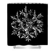 Snowflake Vector - Gardener's Dream Black Version Shower Curtain by Alexey Kljatov