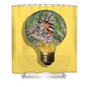 Butterfly In Lightbulb Shower Curtain by Shane Bechler