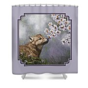 Wolf Pup - Baby Blossoms Shower Curtain by Crista Forest