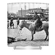 Atlantic City: Donkey Shower Curtain by Granger