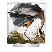 Audubon: Heron Shower Curtain by Granger