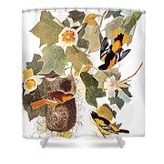 Audubon: Oriole Shower Curtain by Granger