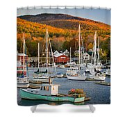 Autumn Gold Shower Curtain by Susan Cole Kelly