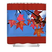 Autumn In The Sky Shower Curtain by Kaye Menner