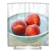 Autumn Peaches Shower Curtain by Marilyn Hunt