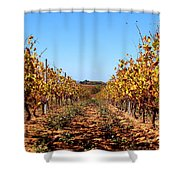Autumn Vines Shower Curtain by K McCoy