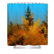 Autumnal Forest Shower Curtain by David Lane
