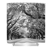 Avenue Of Oaks Charleston South Carolina Shower Curtain by Stephanie McDowell