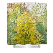 Backyard Shower Curtain by Leah  Tomaino