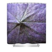 Balloon Flower Shower Curtain by Teresa Mucha