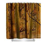 Bamboo Heaven Shower Curtain by Bedros Awak