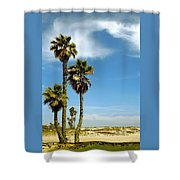 Beach View With Palms And Birds Shower Curtain by Ben and Raisa Gertsberg