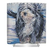 Bearded Collie In Snow Shower Curtain by Lee Ann Shepard