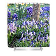 Beautiful Spring Day Shower Curtain by Carol Groenen