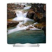 Beauty Creek Cascades Shower Curtain by Larry Ricker