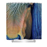 Before Sundown Shower Curtain by Brian  Commerford