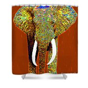 Big Elephant 20130201p20 Shower Curtain by Wingsdomain Art and Photography