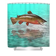 Big Fish Shower Curtain by Jerry McElroy