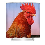 Big Red Rooster Shower Curtain by James W Johnson