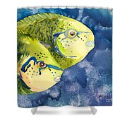 Bignose Unicornfish Shower Curtain by Tanya L Haynes - Printscapes