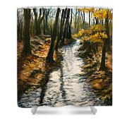 Bike Path Brook Shower Curtain by Jack Skinner