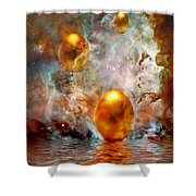 Birth Shower Curtain by Jacky Gerritsen