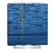 Black And White On Blue Shower Curtain by Tom Vaughan