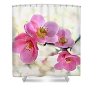 Blossoms Shower Curtain by Marion Cullen