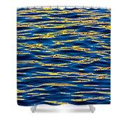 Blue And Gold Shower Curtain by Steve Gadomski