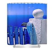 Blue gate Shower Curtain by Silvia Ganora