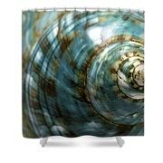 Blue Seashell Shower Curtain by Fabrizio Troiani