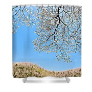 Blue Skies And Dogwood Shower Curtain by Tamyra Ayles