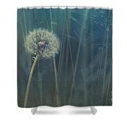 Blue Tinted Shower Curtain by Priska Wettstein