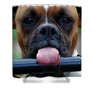 Boxer Briefs Number One Shower Curtain by Skip Willits