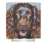 Boykin Spaniel Shower Curtain by Lee Ann Shepard