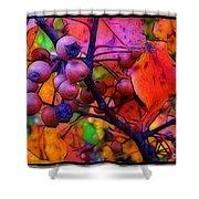 Bradford Pear In Autumn Shower Curtain by Judi Bagwell