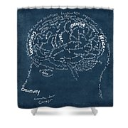 Brain drawing on chalkboard Shower Curtain by Setsiri Silapasuwanchai