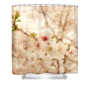 Breathe - Holmdel Park Shower Curtain by Angie Tirado
