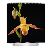 Bright Orchid Shower Curtain by Ron Dahlquist - Printscapes