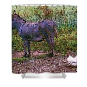 Buddies Take A Walk Shower Curtain by Methune Hively