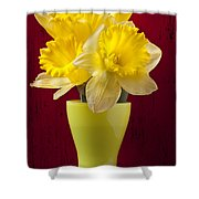Bunch Of Daffodils Shower Curtain by Garry Gay