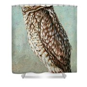 Burrowing Owl Shower Curtain by James W Johnson
