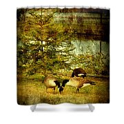 By The Little Tree - Lake Carasaljo Shower Curtain by Angie Tirado