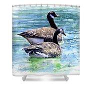 Canada Geese Shower Curtain by John D Benson