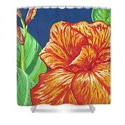 Canna Flower Shower Curtain by Adam Johnson