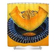 Cantaloupe Oil Painting Shower Curtain by Natalja Picugina