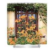 Carmel Mission Window Shower Curtain by Carol Groenen