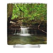 Cascade Happy Trail Shower Curtain by Michael Peychich